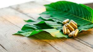 kratom leaf capsule
