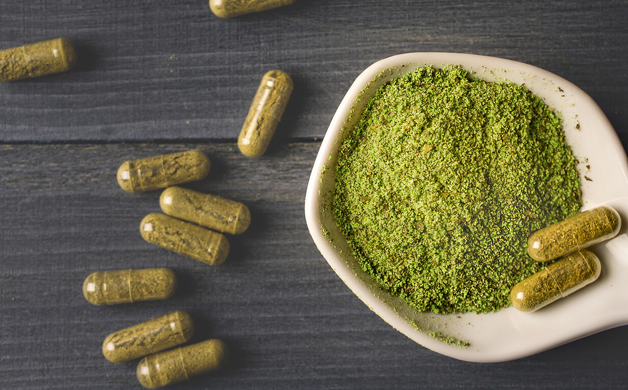 What Kratom Beginners Need to Know: The Ultimate Guide